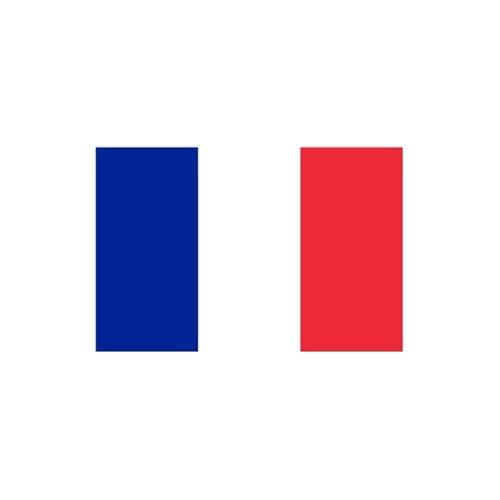 旗帜 三号法国旗 三号法国国旗 192cm*128cm 3号法国国旗