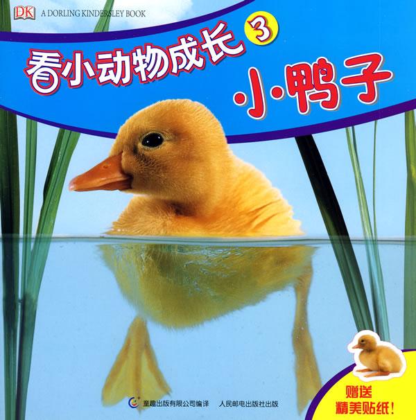 看小动物成长3:小鸭子