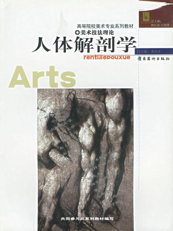 人体解剖学(美术技法理论)/高等院校美术专业系列图片