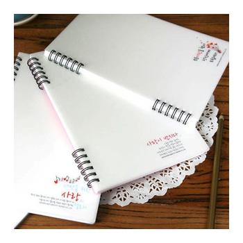 韩国papier清新自然乳白pvc磨砂软封皮螺旋单线本日记记事本 4款