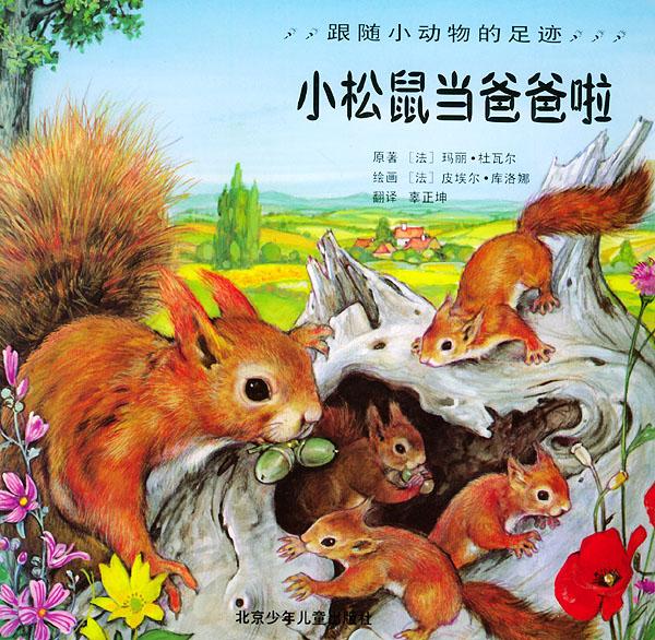 小松鼠当爸爸啦——跟随小动物的足迹/注音版