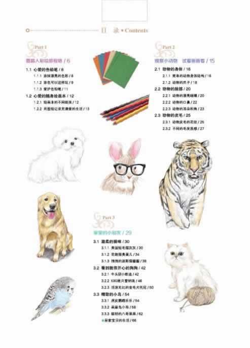 彩绘色铅笔之旅:可爱动物篇 夏小鱼著 9787538181302
