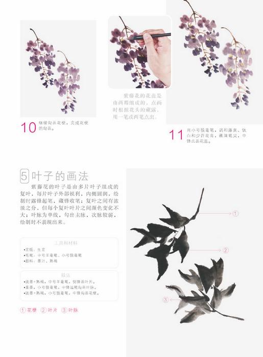 国画名师指导——张延东写意花卉技法