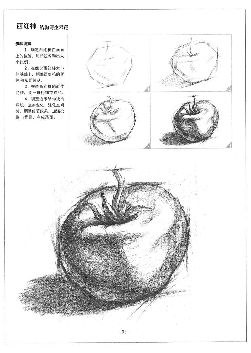素描基础教程 从结构到明暗(一套4本) 赵锦杰 张 雷