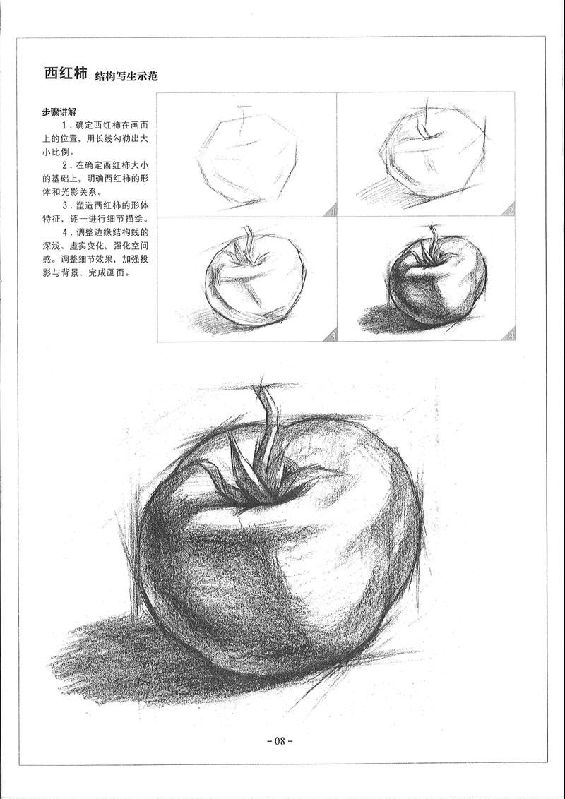素描静物的画法,全书重在强化基础技法的训练,旨在提高学习者的综合