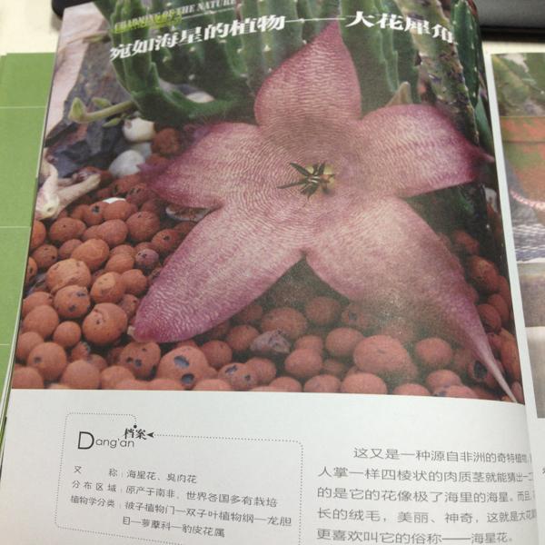 一本地理的异志·稀奇古怪的植物·星球地图出版社
