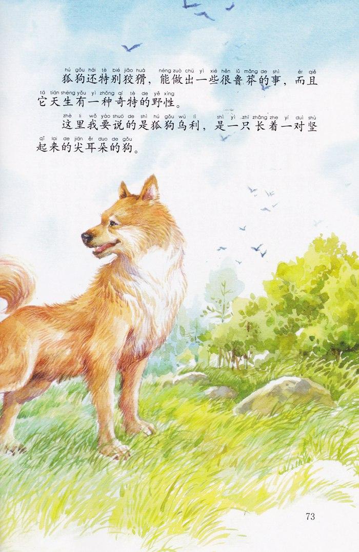 西顿动物小说全集(彩绘拼音版)--狐狗乌利
