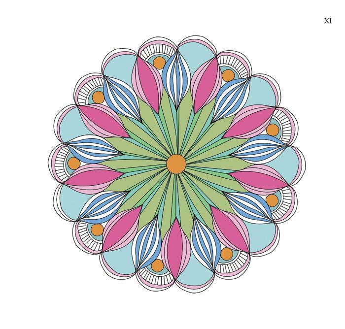 神奇的曼陀罗 莲花