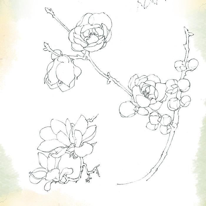 《诗情花意——古风水彩花卉技法