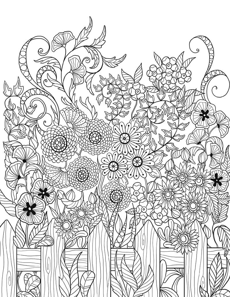 女性议题,大自然的植物和动物,其构图充满灵性,线条柔和优美,使各种奇