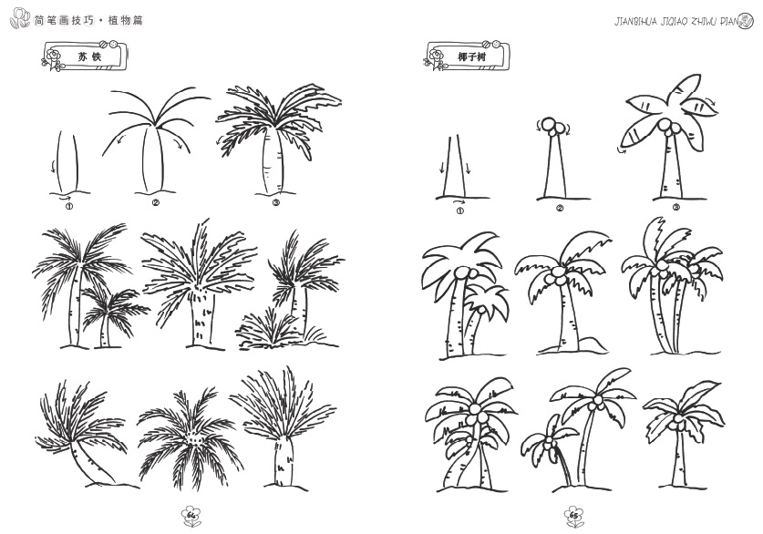 应用实践,各种植物简笔画资料和植物简笔画组合等.