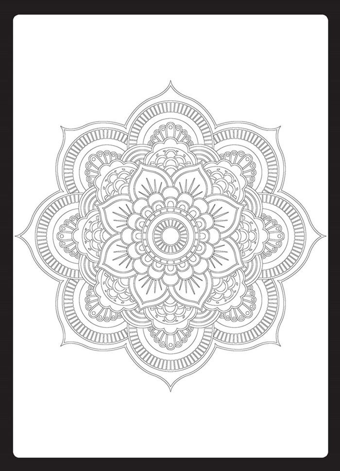 花开花落:艺术家的曼陀罗
