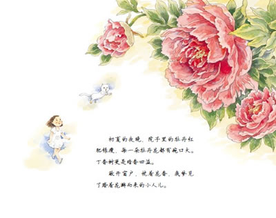 牡丹花的彩铅画法步骤