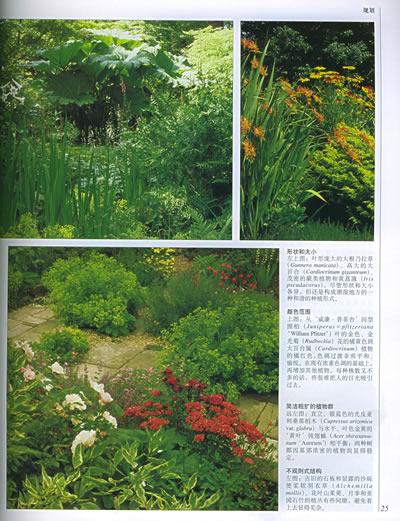 dk最新版世界園林植物與花卉百科全書(精裝)