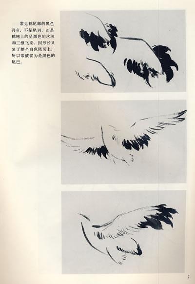 中国画自学丛书----怎样画仙鹤