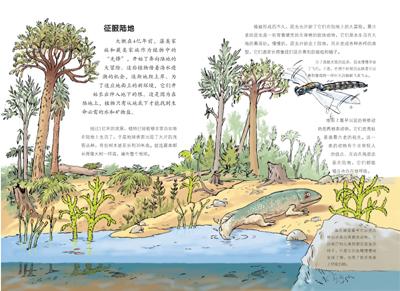 恐龙化石的手抄报