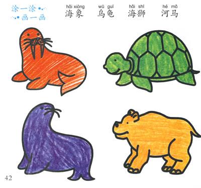智力学画水族动物篇——在学画中开发智力/20678792