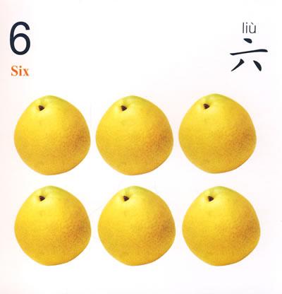 数数(数与简单加法)