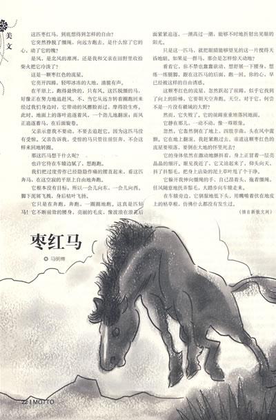 壁纸 大象 动物 400_609 竖版 竖屏 手机