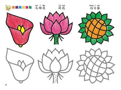 我的第一本涂色画·植物篇 - 儿童手工 河南科学技术