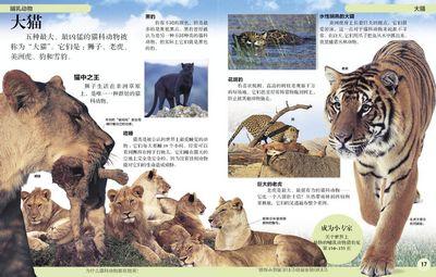 有趣的dk儿童百科:动物的世界