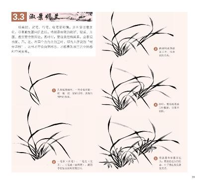 中国写意画入门轻松学:兰花