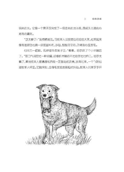 动物亲朋(关于野生动物的记录和描述的文学)